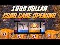 I Opened 1000 In Csgo Cases profit