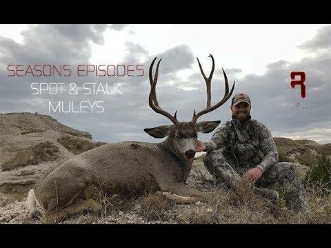 Spot & Stalk Archery Mule Deer S5E5 Seg1