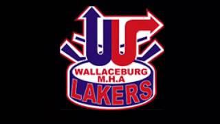 Wallaceburg Atom Tri County #2 League Champs – VIDEO