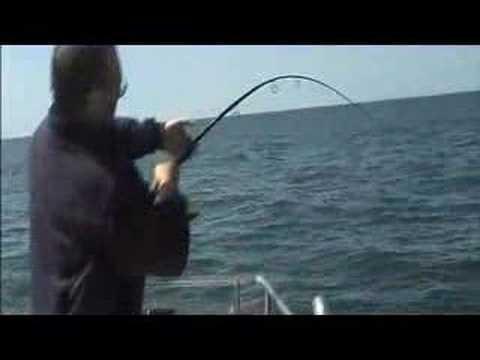 Pesca ao Pargo - 18,5kg!