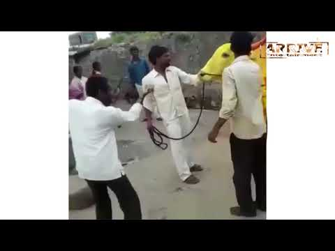 THE BEST VIRAL VIDEOS COMPILATION  FUNNY CLIPS   Arrive Entertainment