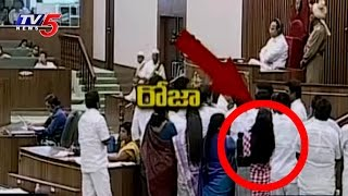 Suspension Effect on YSRCP MLA Roja Behaviour in AP Assembly | TV5 News