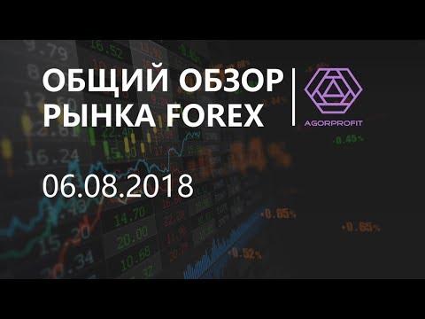 Общий обзор рынка форекс на 06.08.2018 - DomaVideo.Ru