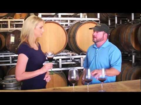Wine tasting in the barrel room of Bending Branch Winery