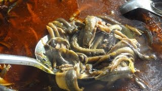 Gia Nghia (Dak Nong) Vietnam  City new picture : mr.hotsia eat Eel and Gruel in Gia Nghia , Dak Nong