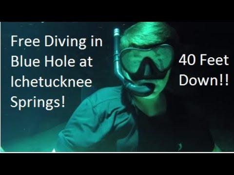 Free Diving Blue Hole at Ichetucknee springs!