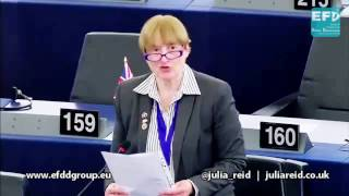 Avoiding EU bureaucracy in the medical devices sector - Julia Reid MEP