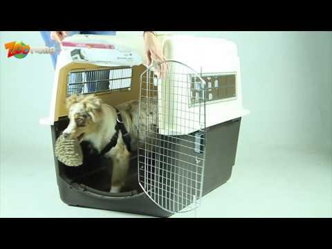 Comment transporter et voyager avec un chien ou un chat ?
