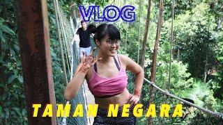 Taman Negara Malaysia  City pictures : Day Trip to TAMAN NEGARA | MALAYSIA