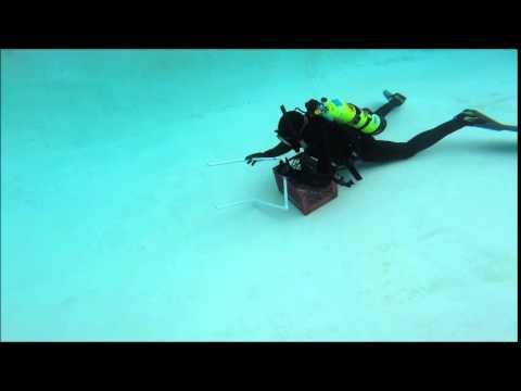 Evan's dive exercise 2