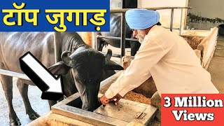 Video किसान ने लगाये ऐसे जुगाड़ सब हैरान |Automatic water bowl|Gobar gas plant|Dairy Farm india MP3, 3GP, MP4, WEBM, AVI, FLV Desember 2018