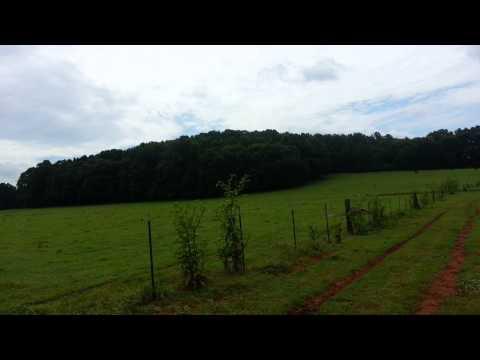 174 acres Talladega, AL