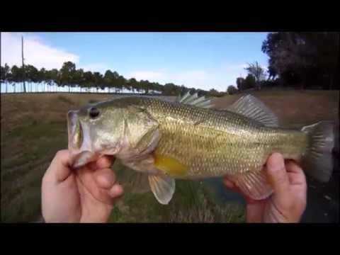 Houston area, small creek fishing