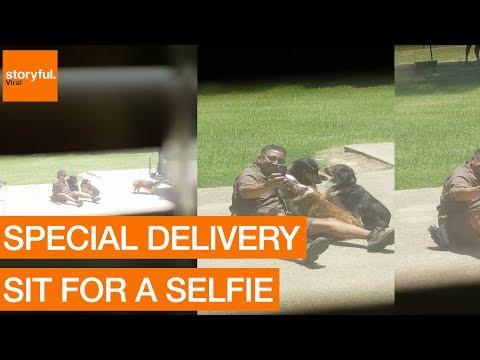 Postimies pysähtyi rapsutteleen koiria – Otti myös kuvia niiden kanssa