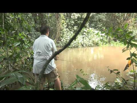 "Real Adventure with Tomahawk ""Amazonia"": Part 1"