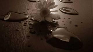 Ali Kınık - Çal Kemancı