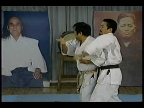 Kata Bunkai Kumite