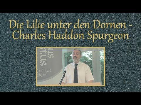 Die Lilie unter den Dornen - Charles Haddon Spurgeon