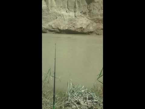 ловля османа в горных реках