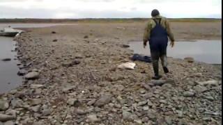 рыбалка ялбынья видео