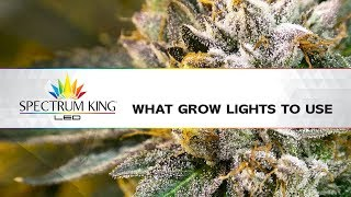 What Grow Lights To Use? by Spectrum KING LED