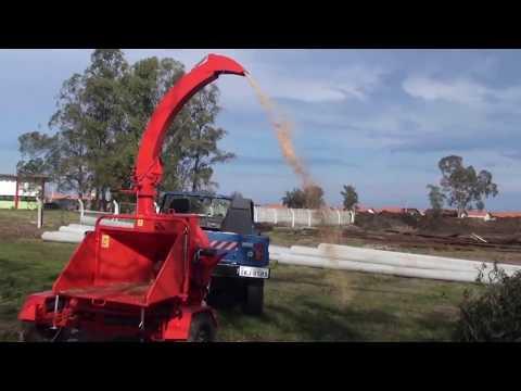 Picador / triturador de troncos e galhos PDU 250 G.P