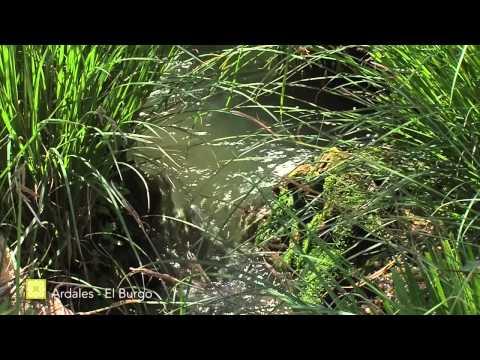 Gran Senda de M�laga es... Medio Ambiente