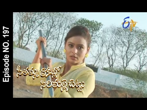 Seethamma-Vakitlo-Sirimalle-Chettu--22nd-April-2016-–-Full-Episode-No-197