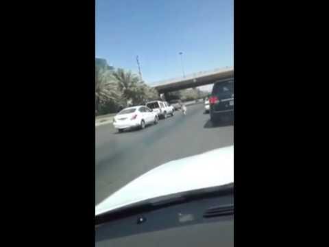 خروف يركض على الطريق الدائري الشمالي في الرياض