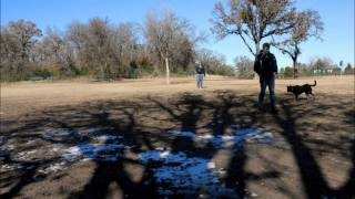 Time Lapse Movie - Wiggly Field Dog Park Denton, TX