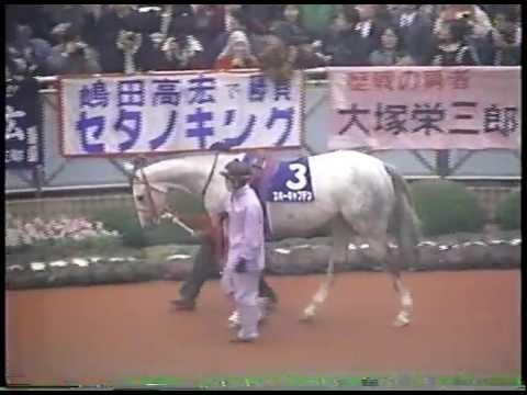 1994年 朝日杯3歳S(現:朝日杯FS)  フジキセキ