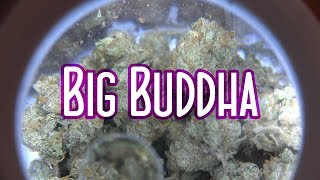 Spannabis 2018 Big Buddha SUPERCHARGED Session with LIFT TICKETS by Urban Grower