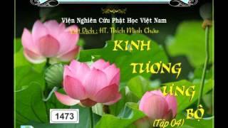 Kinh Tương Ưng Bộ 4 Phần 1 - DieuPhapAm.Net
