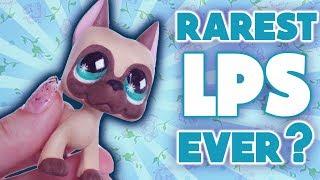 Video RAREST LPS EVER?! DIY Littlest Pet Shop 636 Custom Tutorial MP3, 3GP, MP4, WEBM, AVI, FLV Juni 2018