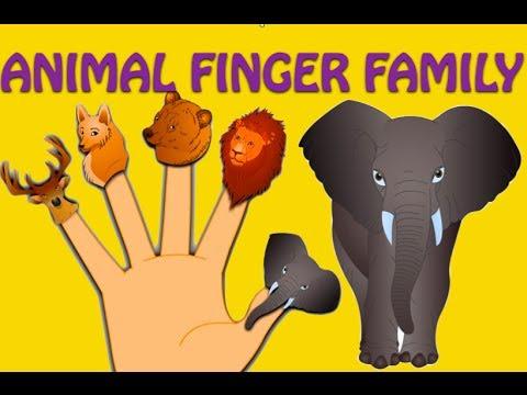 Animal Finger Family - Nursery Rhymes For Children