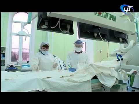 Ведущие специалисты страны проводят мастер-классы для новгородских медиков