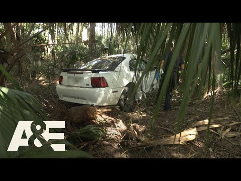 Live Rescue: High-Speed Crash Into the Woods (Season 3) | A&E