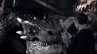 Dudes And Dragons    New Hollyiwood Moviie  Full Movie   Best Action Moviee Full Engiish