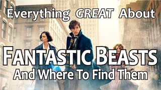 Video Everything GREAT About Fantastic Beasts and Where to Find Them! MP3, 3GP, MP4, WEBM, AVI, FLV Juni 2018