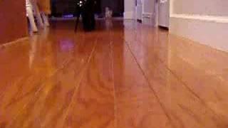 Ballet Boots On Hardwood Flooring