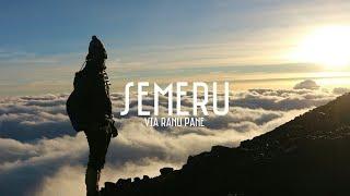 Download Video PENDAKIAN GUNUNG SEMERU via RANU PANE | Tobias Evan #18 MP3 3GP MP4