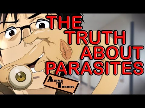 Anime Theory: The TRUTH About Parasites! (Parasyte Theory)