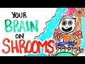 איך פטריות משפיעות על המוח?