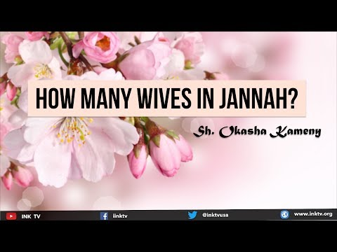 How Many Wives in Jannah?   Sh. Okasha Kameny   INK TV Q&A