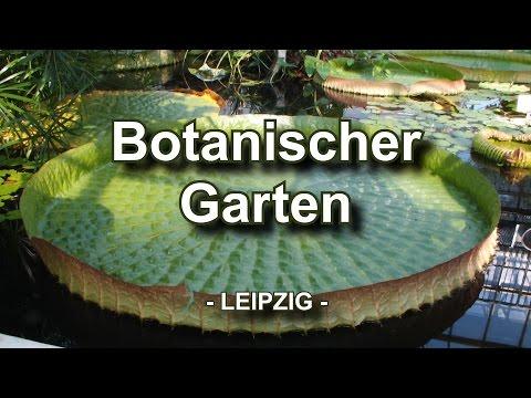 Botanische Gärten: Leipzig (Sachsen) - Botanischer Ga ...