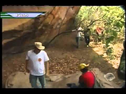 Desbravadoresdel na companhia de Amadeu Campos mostra pinturas rupestres em Dom Expedito Lopes, PI