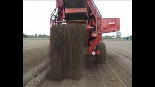 Dewulf RDT Superia - 2-row trailed potato harvester