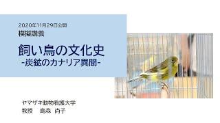 飼い鳥の文化史