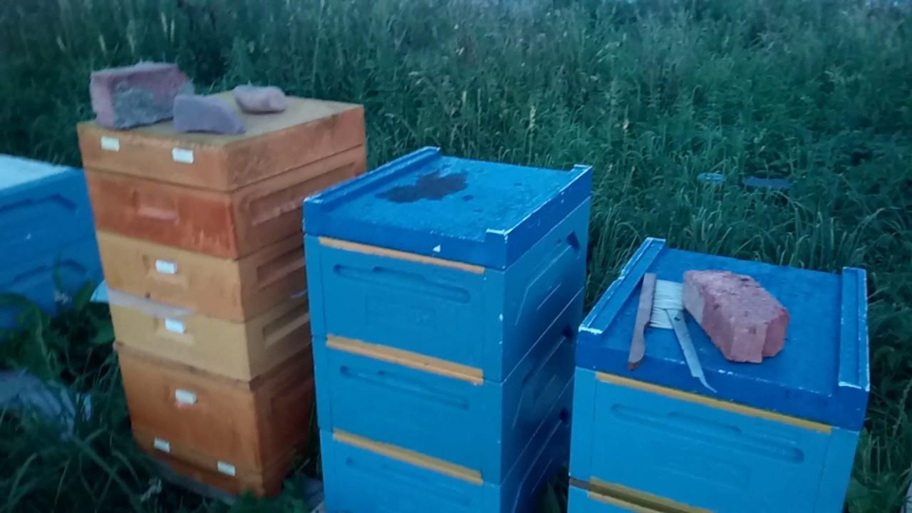 Откачка меда Часть вторая медогонка Медуница Комби 4