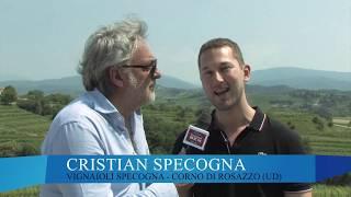 I GIOVANI DEL VINO: Cristian Specogna - Regia di Maurizio Potocnik